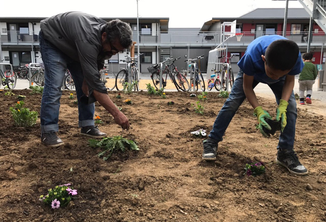 Gartenprojekt1_galerie.jpg